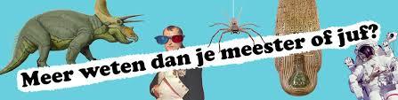 http://www.zoet.nu/pictures/_slideshow/museum_jeugd_universiteit2.jpg